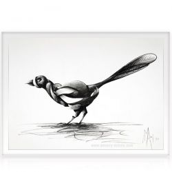 Charcoal on paper Magpie