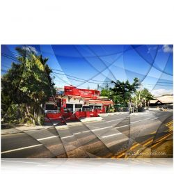 "Art photography Mauritius ""Royal Road"""