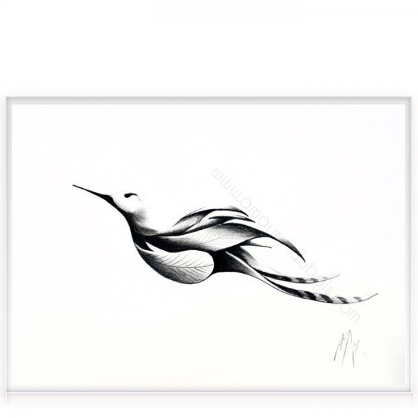"""Charcoal on paper """"Bird 3"""""""