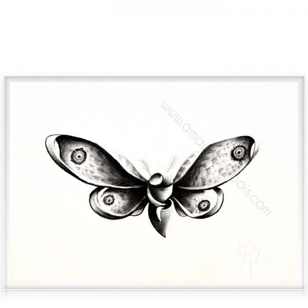 """Charcoal on paper """"Butterfly"""""""
